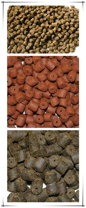 floating fish feed pellets