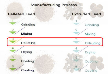 aquatic-feed-manufacturing-process
