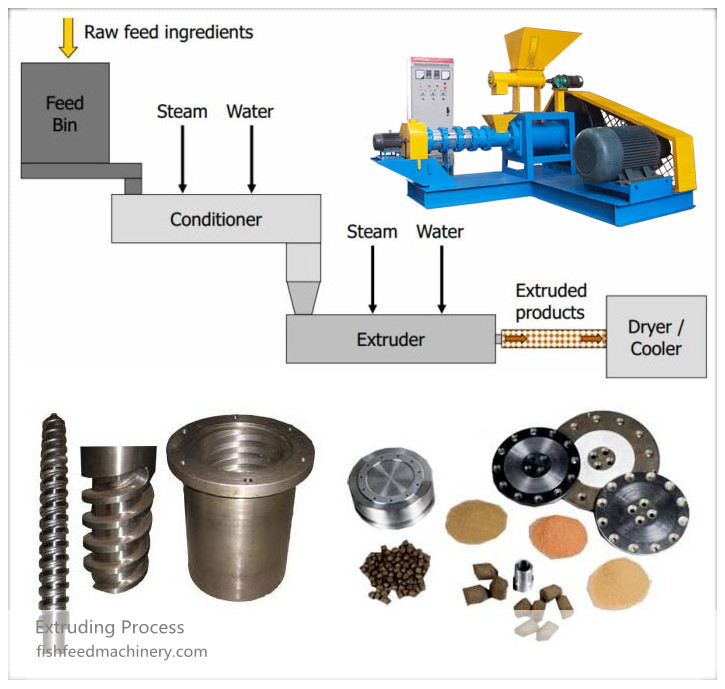 fish-feed-extruding-process