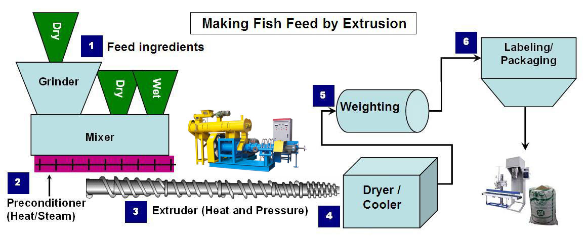 fish-feed-extruder