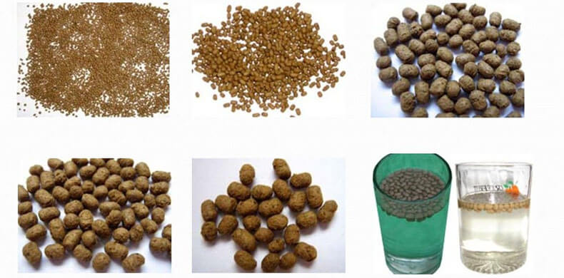 Processing and Application of Floating and Sinking Fish Feed