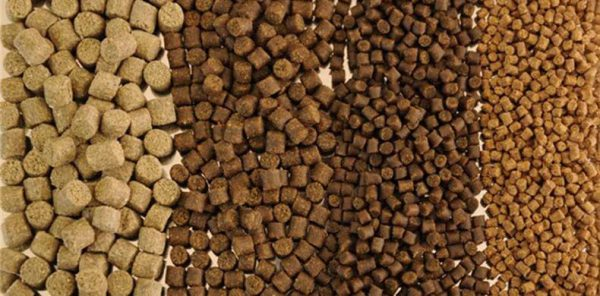 Extruded fish feed