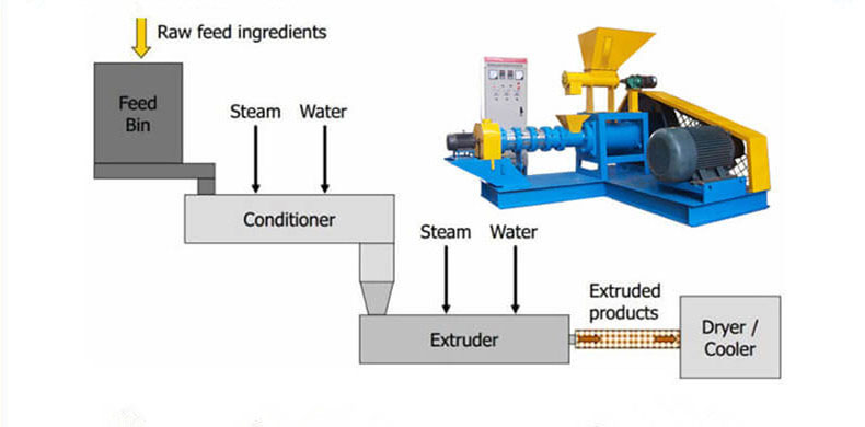 Fish Feed Extrusion Process with Extruder Machine
