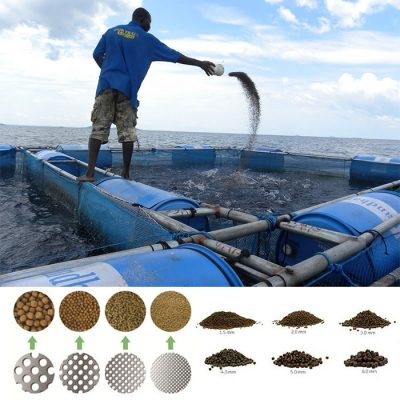 floating fish feed